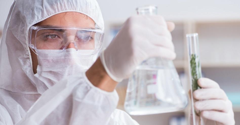 Recherche scientifique sur le CBD
