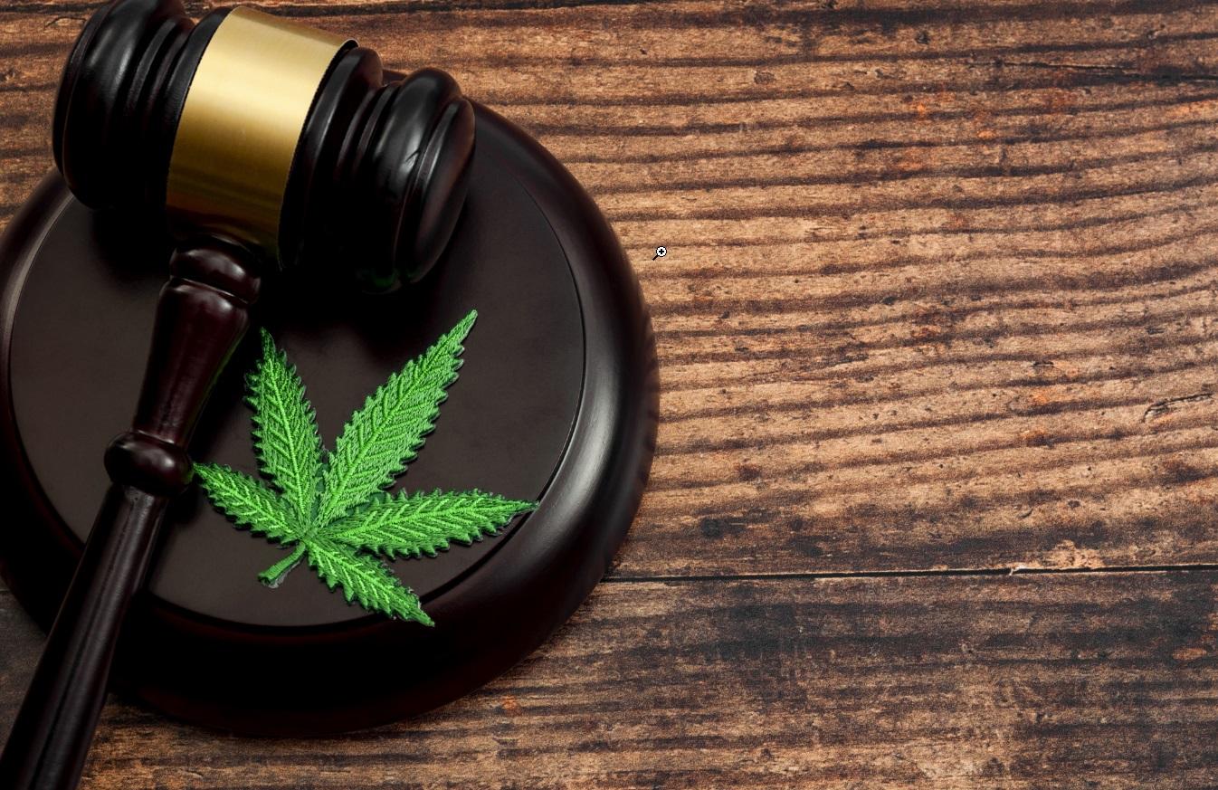 Fleur de cannabis et marteau