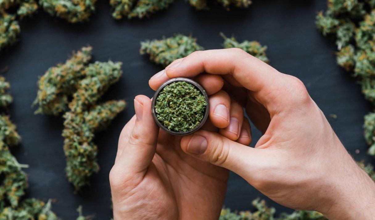 Cannabis dans un grinder